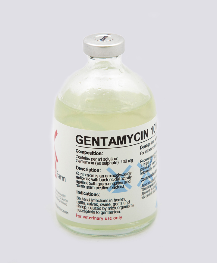 Gentamycin 10% Inj